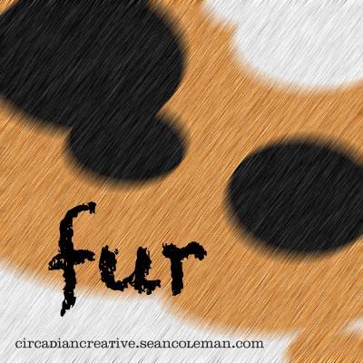 basic texture 6 - fur