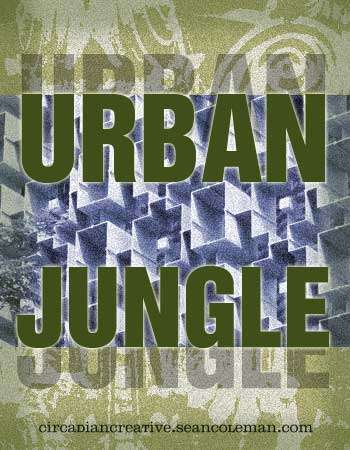 book cover design project 5 - urban jungle