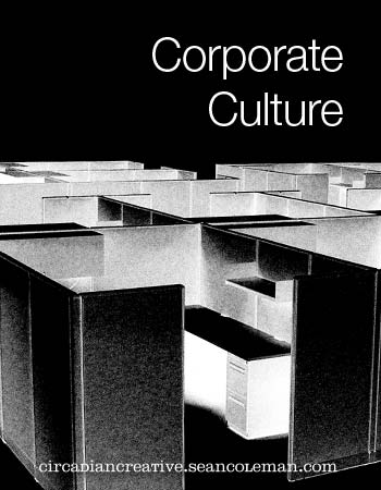 book cover design project #16 - corporate culture