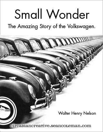book cover design project 20 - small wonder