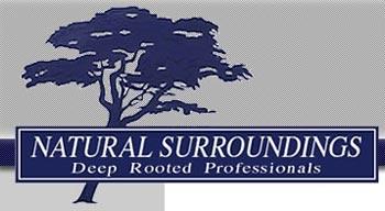 logo before