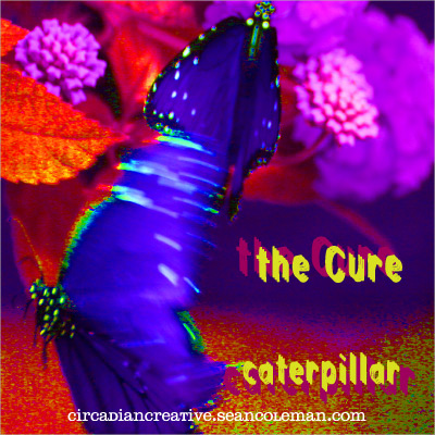 music art 24 - the cure - caterpillar.