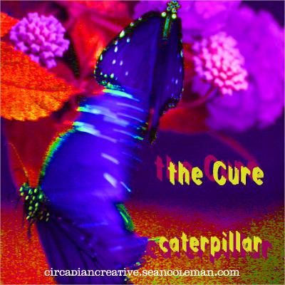 music art 24 - the cure - caterpillar.