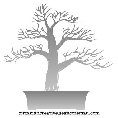daily design 253 bonsai project