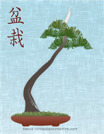 creation 140 bonsai 03