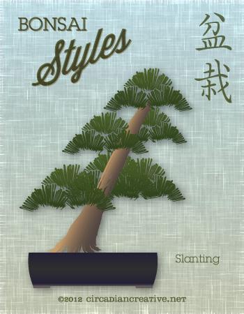 creation 156 bonsai 16