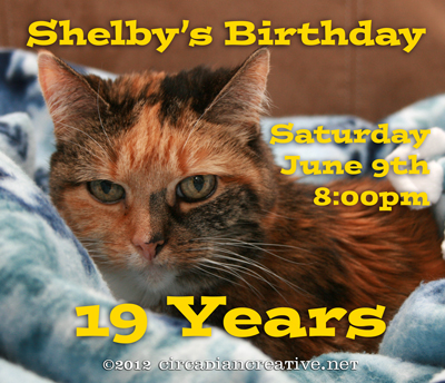 creation 160 happy birthday shelby
