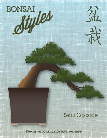 creation 161 bonsai 19