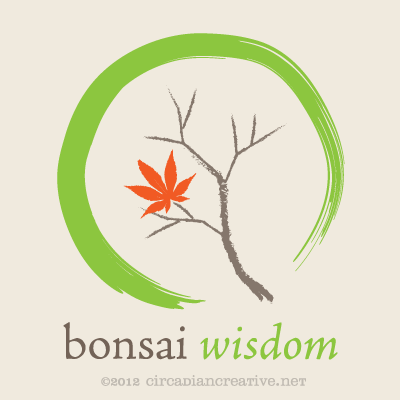 creation 179 bonsai wisdom 3