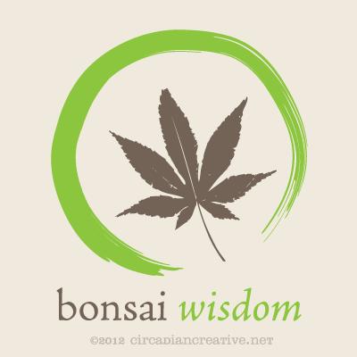 creation 180 bonsai wisdom 4