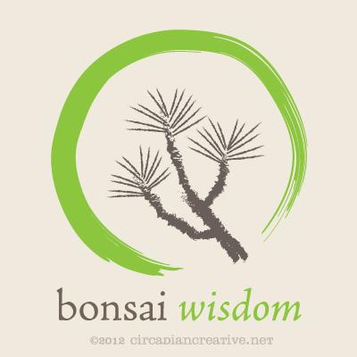 creation 181 bonsai wisdom 5