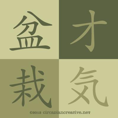 creation 206 bonsai wisdom 9