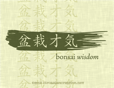 creation 212 bonsai wisdom 15