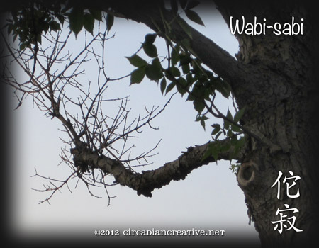 creation 215 wabi-sabi 03