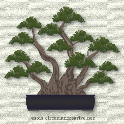 creation 275 bonsai 24